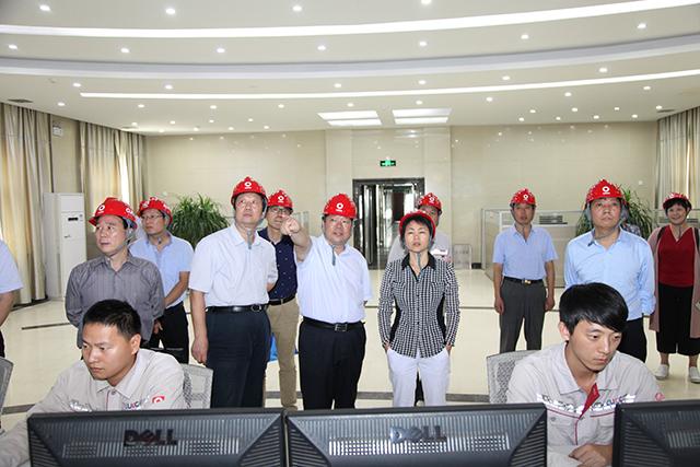 河南省卫计委副主任黄红霞一行到公